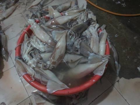 Mực ống bị phát hiện ngâm hóa chất tại chợ đầu mối Long Biên(HN)