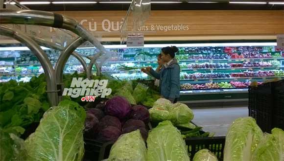 siêu thị Lotte nhập rau không rõ nguồn gốc