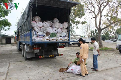 6 tấn tóp mỡ mốc xanh bắt giữ ngày 21/4 tại Thanh Hóa