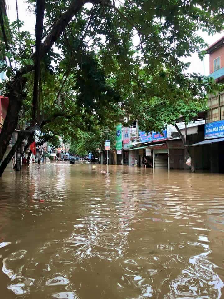 Toàn tỉnh Yên Bái đã có 1.233 ha lúa, ngô, hoa màu bị thiệt hại do mưa lũ.  Ảnh Facebook Yên Bái 24H