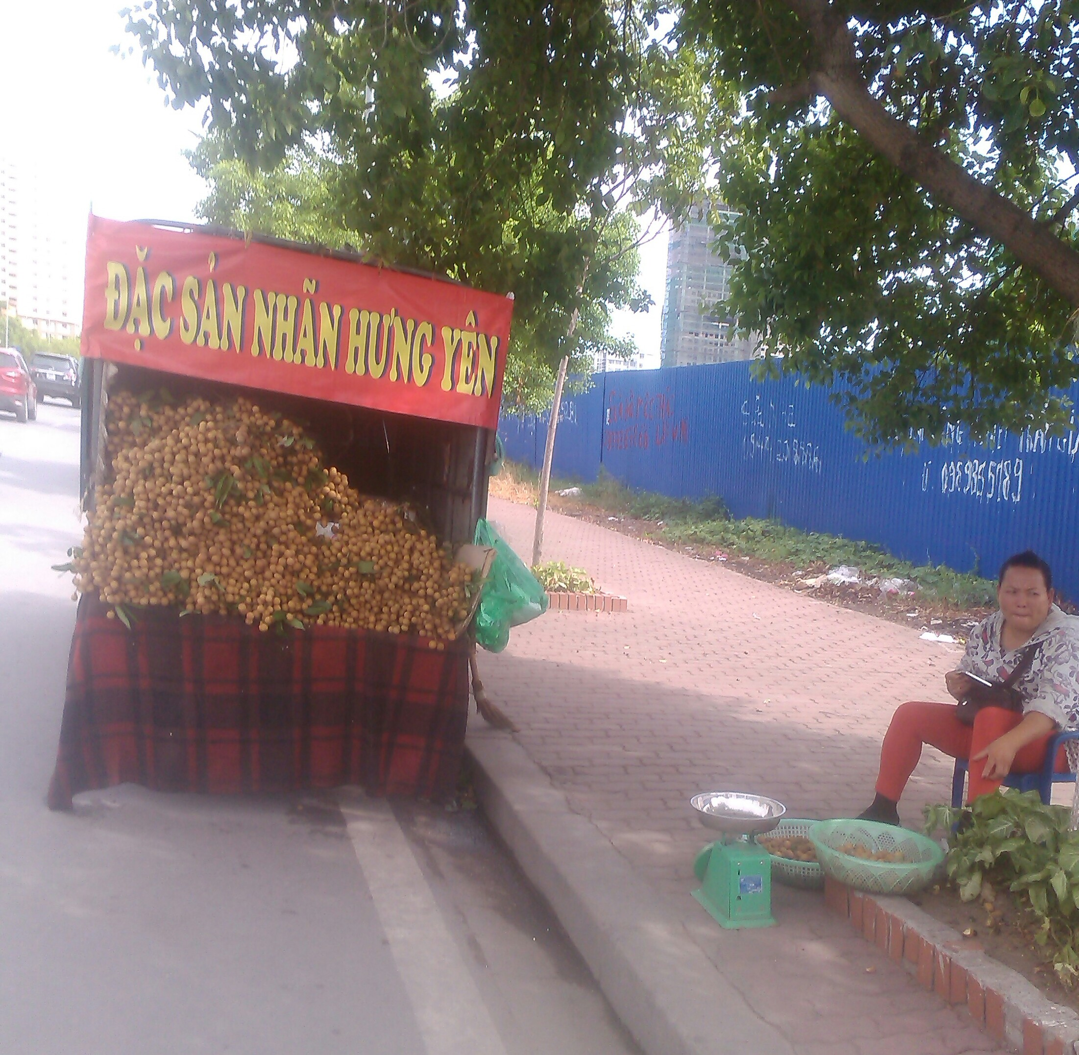 Nhãn lồng Hưng Yên rởm bày bán tại Hà Nội
