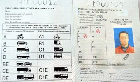 Sau 5 ngày kể từ khi nộp đầy đủ hồ sơ người dân sẽ được Sở GTVT TP.HCM cấp giấy phép lái xe quốc tế
