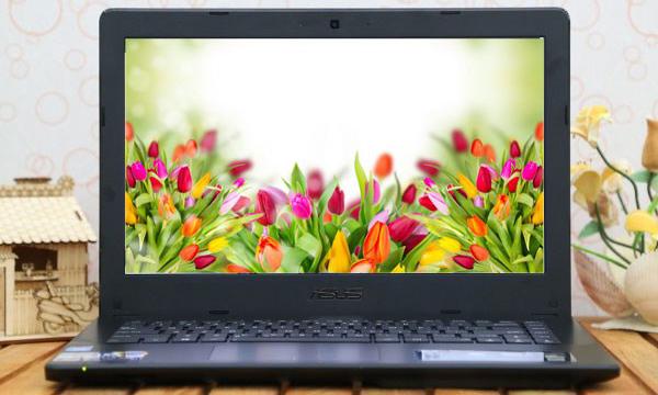 Laptop giá rẻ Asus cấu hình mạnh mẽ bền đẹp ấn tượng