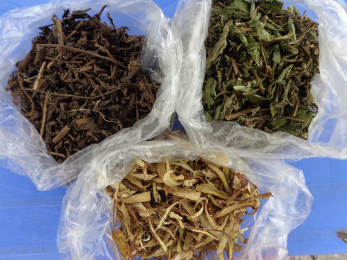 Nguyên liệu trà nhân trần dễ mua