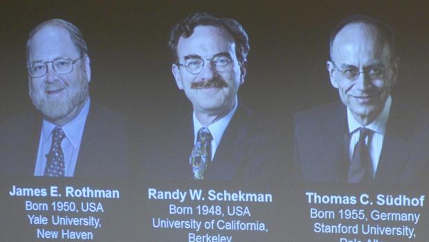 Nobel Y học 2013