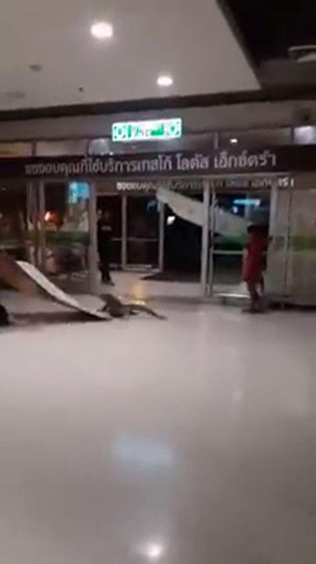 Con thằn lằn khổng lồ chặn ngay lối vào siêu thị khiến nhiều người tò mò. Ảnh: Mirror