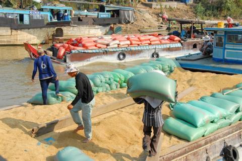 rung Quốc chiếm 42% thị trường xuất khẩu gạo của Việt Nam
