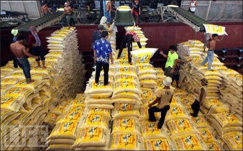 Thái Lan xuất khẩu gạo