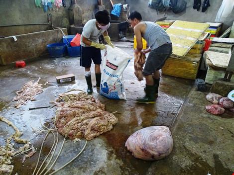 Nội tạng bò được ngâm hóa chất trước khi bán ra thị trường. Ảnh: báo pháp luật Hồ Chí Minh