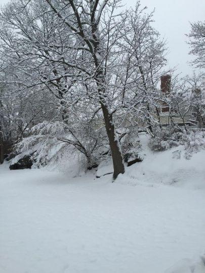 Lớp tuyết dày  ở khu Greenwich. Vào Thứ Bảy 24 tháng 1, 2015.