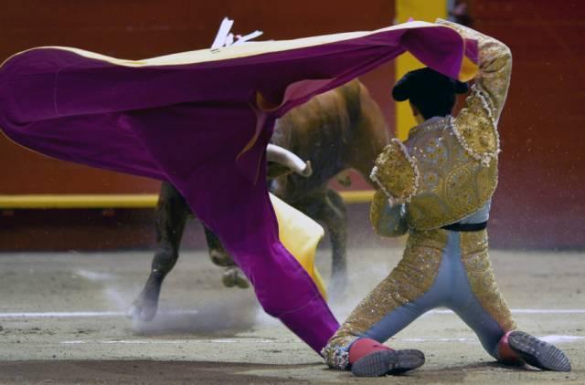 Dũng sĩ đấu bò người Colombia Juan De Castilla trình diễn  trong suốt một trận đấu bò ở đấu trường La Macarena tại Medellin, Colombia.