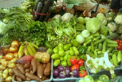 Loại bỏ các nguồn cung cấp rau không đảm bảo an toàn vệ sinh thực phẩm là việc làm cần thiết trước dịp Tết nguyên đán 2015