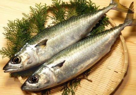 bà bầu nên ăn những loại hải sản đa dạng để cung cấp nguồn dưỡng chất thiết yếu cho sự phát triển trí tuệ của trẻ