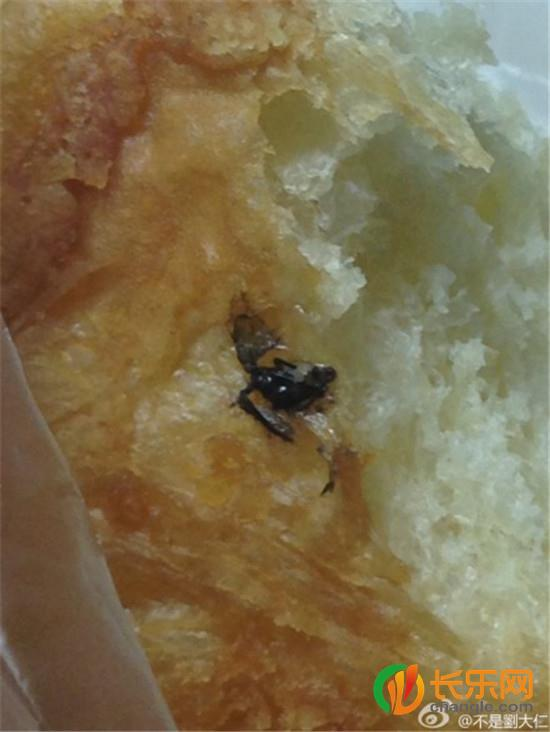 Con côn trùng màu đen nằm giữa chiếc bánh mì đang ăn dở
