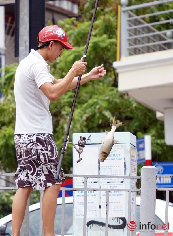 Nhiều người mang cần ra câu và được những con cá khá to.