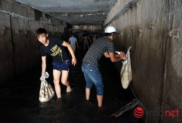 Theo ghi nhân của phóng viên Infonet ngay tại trong ống cống, hàng tạ cá đựng trong các bao tải đã được chuyển ra ngay sau đó ít phút.