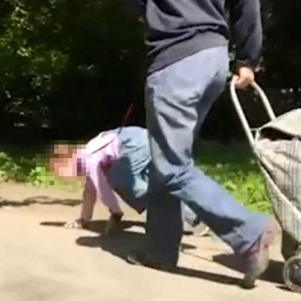 Bé gái khoảng chừng  5 tuổi có những hành động kỳ quái. Ảnh Mirror