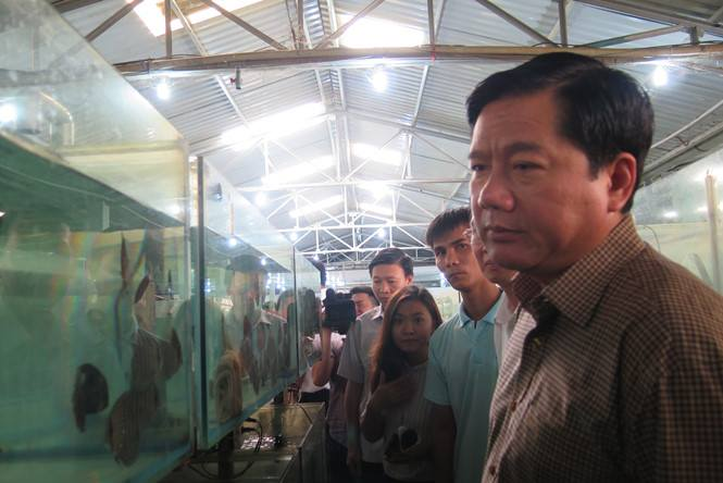 Bí thư Đinh La Thăng thăm công ty xuất khẩu cá cảnh