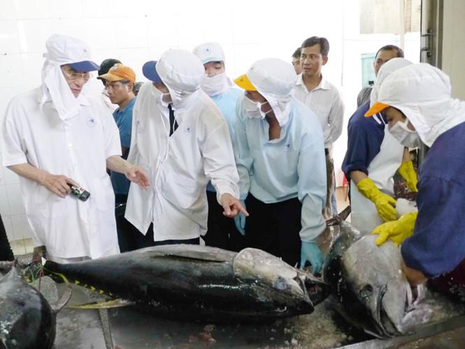 Cá ngừ đại dương Việt Nam được đánh giá cao ở Nhật