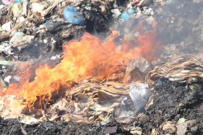 Hàng tấn cá khô tẩm hóa chất độc hại bị tiêu hủy