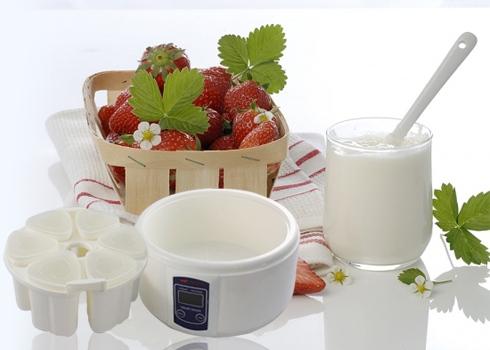 Sử dụng máy làm sữa chua đang là lựa chọn của nhiều gia đình trong mùa hè này