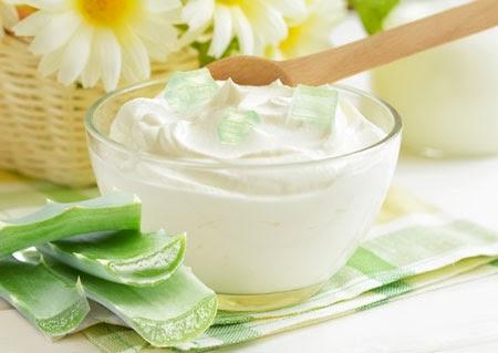 Cách làm sữa chua nha đam tại nhà sẽ giúp các bà nội trợ có món ngon mùa hè cho cả gia đình