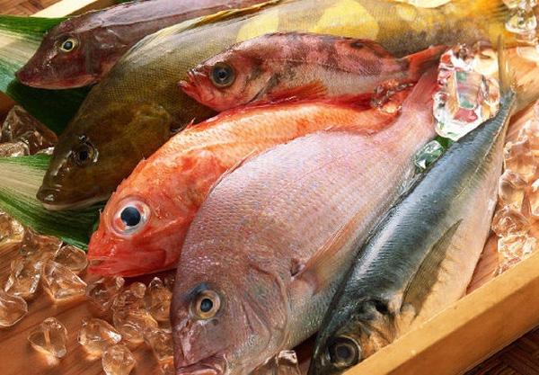Cách phân biệt cá biển nhiễm độc đơn giản nhất