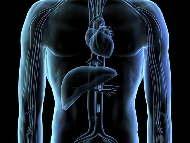 Với thành công này, các cảm biến theo dõi nhịp tim trong tương lai sẽ rất chính xác và có độ tin cậy cao
