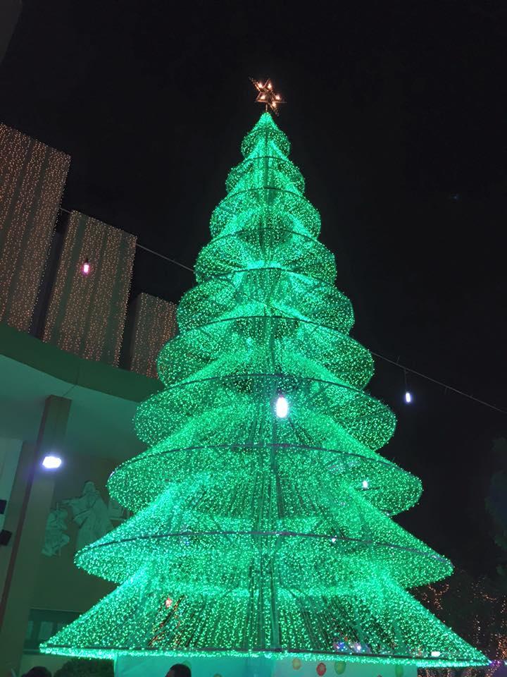 Cây thông Noel rực sáng tại nhà thờ Tân Phú (TPHCM)