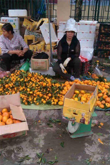 Nhưng chính những người buôn trái cây Trung Quốc cũng phải rùng mình vì độ độc hại của mặt hàng này