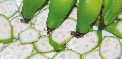 Chuối hột có công dụng chữa bệnh đau dạ dày hiệu quả