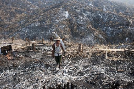 155 người Trung Quốc bị bắt tại Myanmar vì tội buôn lậu  gỗ