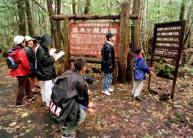 Bí ẩn lạnh người về khu rừng Aokigahara thu hút người đến tự tử ở Nhật Bản - ảnh 1