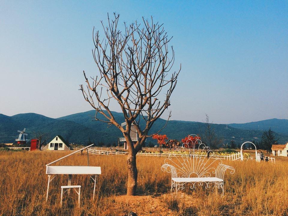 'xứ sở thần tiên' - phim trường chụp ảnh cưới tại Đà Nẵng