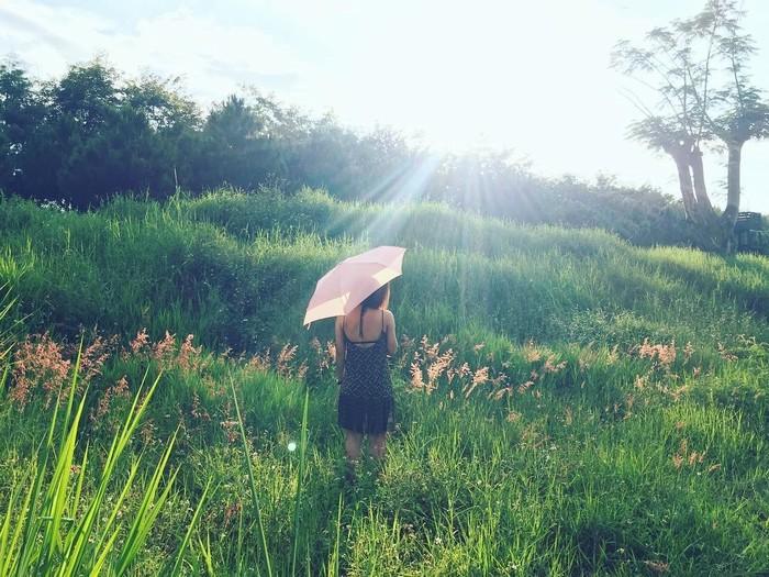 Địa điểm đẹp mê hồn ở Đà Lạt cho tín đồ 'sống ảo'
