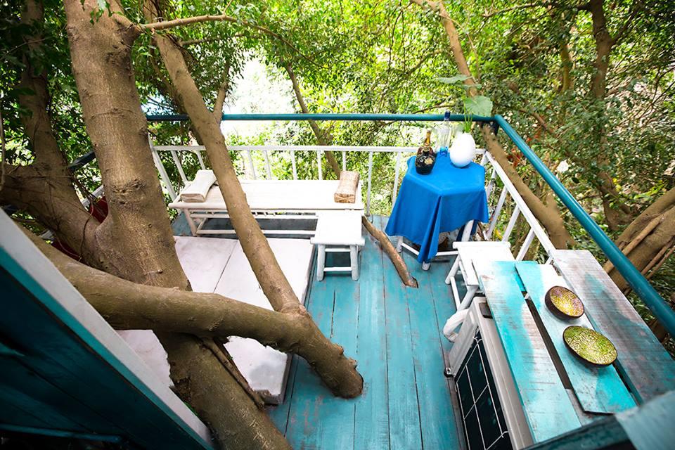 Độc đáo với những ngôi nhà trên cây ngay ngoại thành Hà Nội