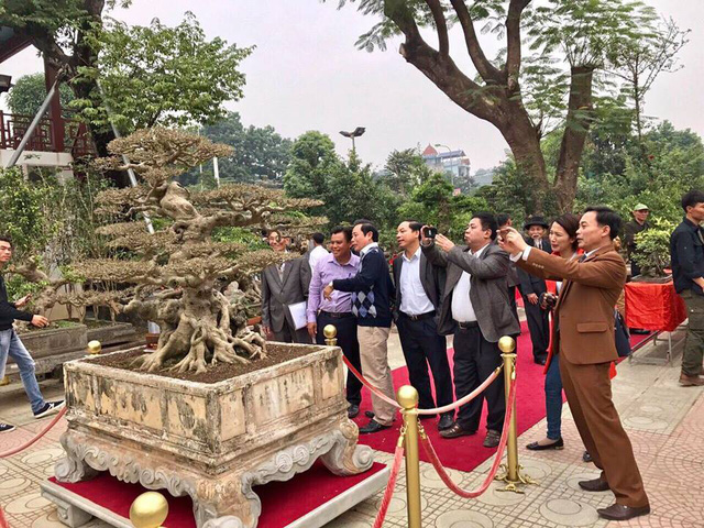 http://vietnamnet.vn/vn/kinh-doanh/thi-truong/xon-xao-thuong-vu-mua-ban-sieu-cay-8-ty-doc-nhat-viet-nam-423291.html