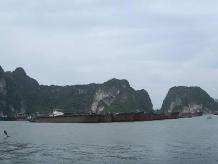 Tàu hàng đã được các cơ quan chức năng yêu cầu lai dắt về nơi tránh bão an toàn.