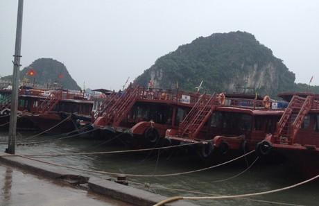 Khu vực ngã ba Cửa Ông (Quảng Ninh) đang có mưa to, gió giật mạnh thành từng cơn. Tàu thuyền đã được đưa vào neo đậu tại cảng Cái Rồng.