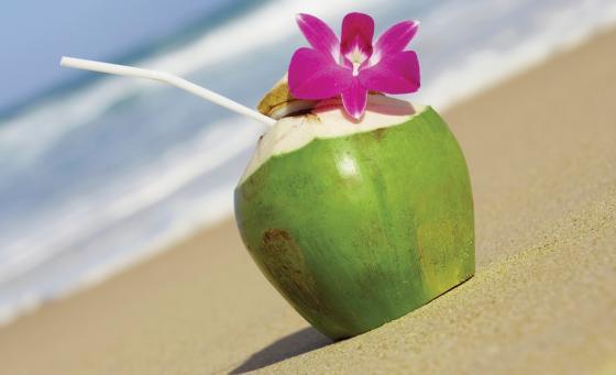 Nước dừa rất tốt cho viêc chữa trị sỏi thận