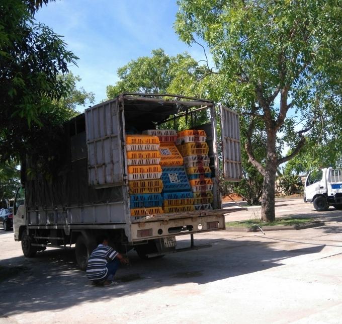 Xe ô tô tải chở gần 3 tấn gà không rõ nguồn gốc xuất xứ