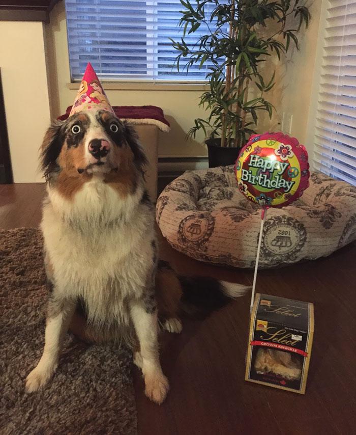 Ơn giời, sinh nhật của tôi cuối cùng cũng đến rồi!
