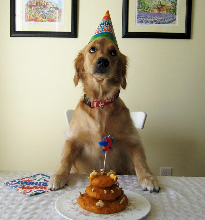 Có bánh 'xịn' như thế này không biết nên ước trước hay ăn trước nhỉ?