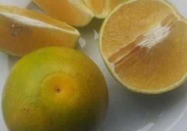 Trái cam xoàn là một món ăn đặc sản của Vĩnh Long. Đây là một loại trái cây cùng họ với cam mật, rất dễ trồng nhất là ở vùng đất cao ráo, dễ thoát nước thì cây sinh trưởng và phát triển mạnh, thông thường cây từ 3 năm tuổi trở lên sẽ cho trái quanh năm. Trái cam xoàn to hơn quít, ruột có màu vàng, vị ngọt thanh hơn quít. Theo khoa học, cam xoàn giúp tăng cường hệ miễn dịch, tăng cường thể lực, có lợi cho làn da của bạn.