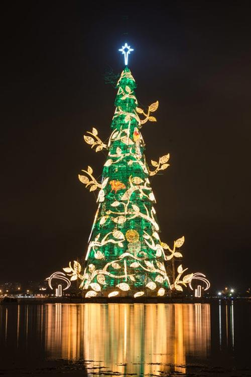 Cây thông noel nổi tiếng nhất thế giới tại Rio de Janeiro, Brazil: Cứ đến dịp Giáng sinh, người dân khắp nơi lại đổ về Ipanema Lagoon, Rio de Janeiro, Brazil để ngắm nhìn cảnh tượng kỳ vĩ của cây thông Noel nổi lớn nhất thế giới. Đây là một tác phẩm nghệ thuật đặc biệt khi nổi trên mặt nước với chiều cao 85m, nặng 542 tấn, được chiếu sáng bởi hơn 3.300.000 bóng đèn mỗi đêm cho đến ngày  6 tháng 1 năm sau. Được thắp sáng lần đầu vào năm 1996, cây thông đã trở thành biểu tượng Giáng sinh của thành phố lễ hội Rio de Janeiro. Theo thông lệ, cây thông sẽ được bật mỗi buổi tối vào đầu tháng 12 cho đến ngày 6 tháng 1 để mọi người có thể ghé đến chiêm ngưỡng