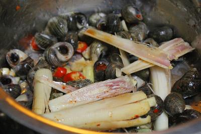 Sau đó cho ốc vào đảo cùng, nêm vào một ít muối, một ít bột ngọt, đậy kín nắp nồi khoảng từ 5-10 phút, thỉnh thoảng lắc đều cho ốc thấm gia vị.