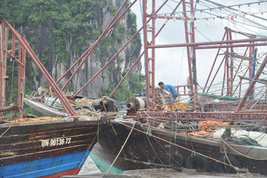 Quảng Ninh khẩn trương khắc phục hậu quả sau bão số 3: