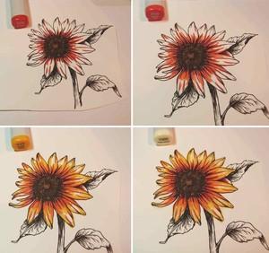 Dùng màu cam đậm, cam nhạt, vàng đậm, vàng nhạt để tô màu cho cánh hoa: Đầu tiên tô tía từ cuống cánh ra các sợi màu cam đậm, tô các tia màu dài hơn bằng màu cam nhạt phủ lên trên, tô phủ lên trên cả hai màu vừa tô bằng màu vàng đậm, phủ gần kín cánh hoa, cuối cùng dùng màu vàng nhạt để tô kín các khoảng trống còn lại trên cánh hoa. Cách tô này tạo màu đổ tự nhiên từ đậm sang nhạt.