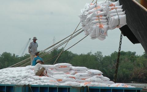 Philippines sẽ nhập thêm gạo để tăng dự trữ sau bão, tạo cơ hội cho thị trường gạo Việt Nam phát triển mạnh tại sân chơi Đông Nam Á
