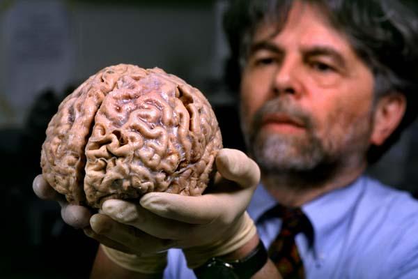 Các nhà khoa học vẫn đang tiếp tục nghiên cứu bộ não con người